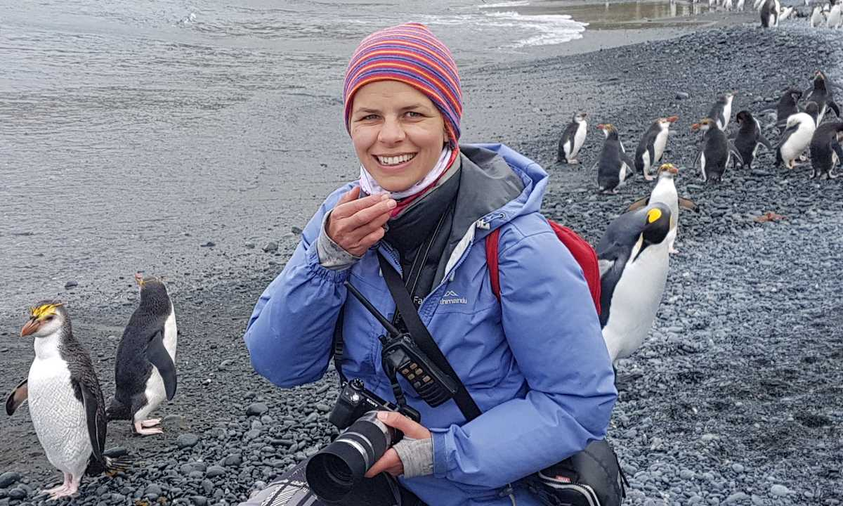 CassiaJackson_5_CassiaJackson_ALL_Endemic-Royal-Penguins-at-Macquarie-Island