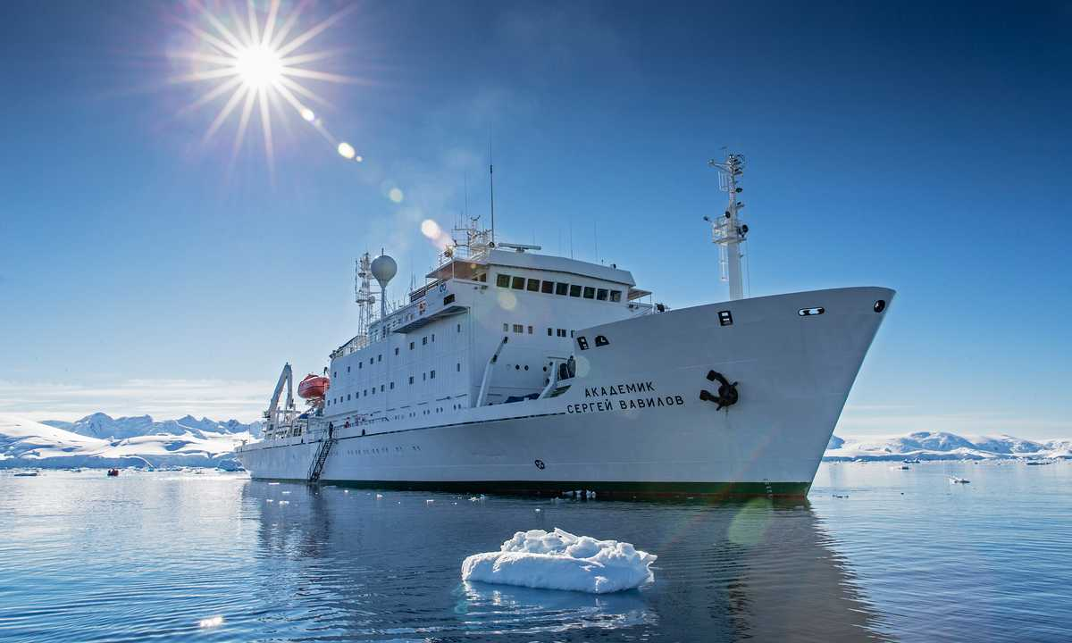 OO_3_Mark_Carwardine_RTD_Antarctica_Akademik_Vavilov