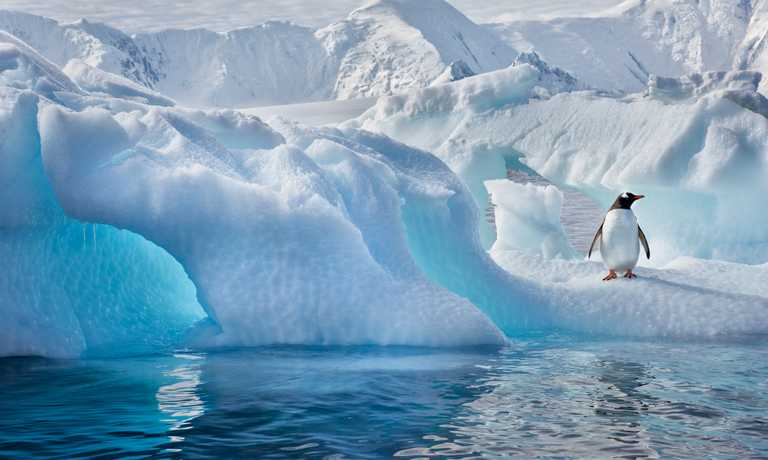Discovering the Antarctic Peninsula