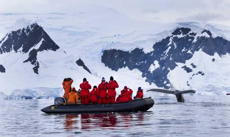 Antarctic Peninsula & Weddell Sea Explorer