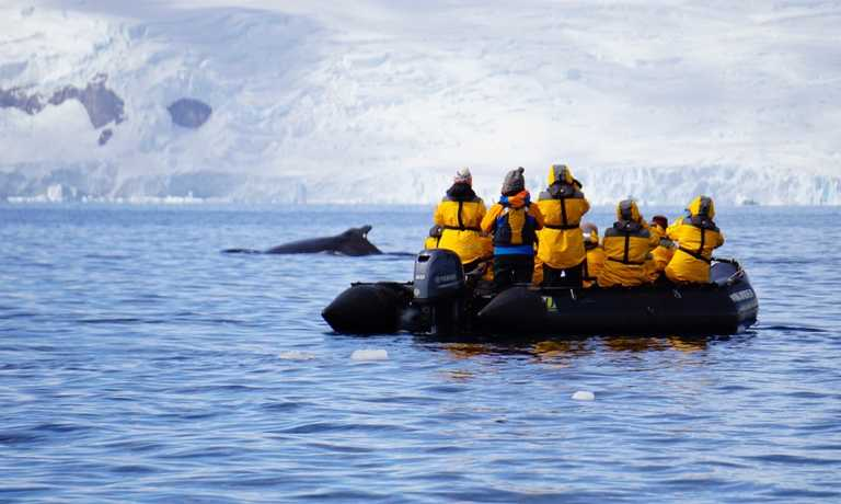 Antarctic Circle Odyssey